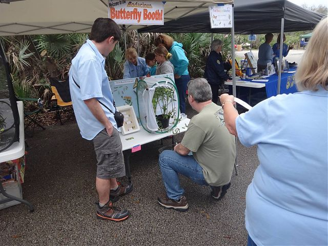 Visitors at the Scrub Jay Festival