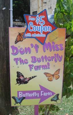 St Thomas Butterfly Farm Sign