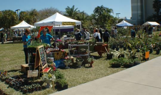 2010 FIT Botanical Fest