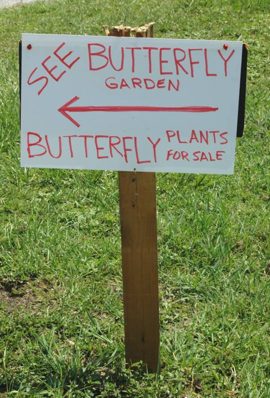 See Butterfly Garden