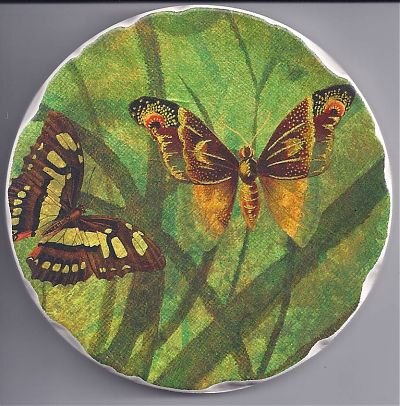Butterfly Coasters Raffle Prize